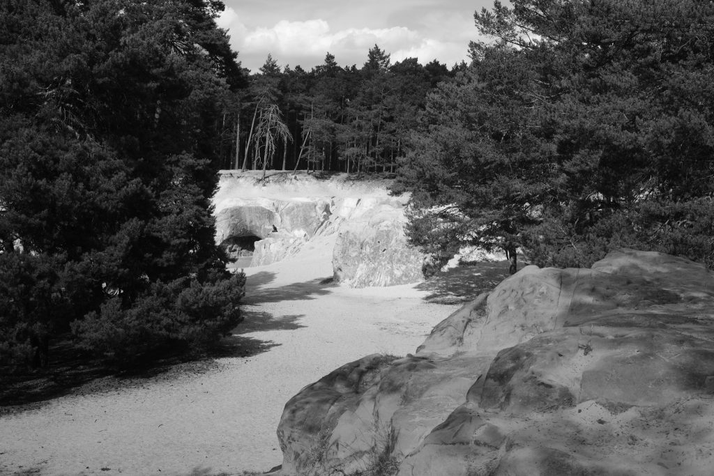 Sandsteinhöhlen im Harz